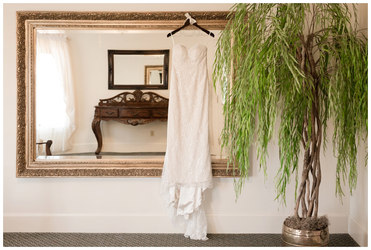 Bride's dress hanging on a mirror with a tree