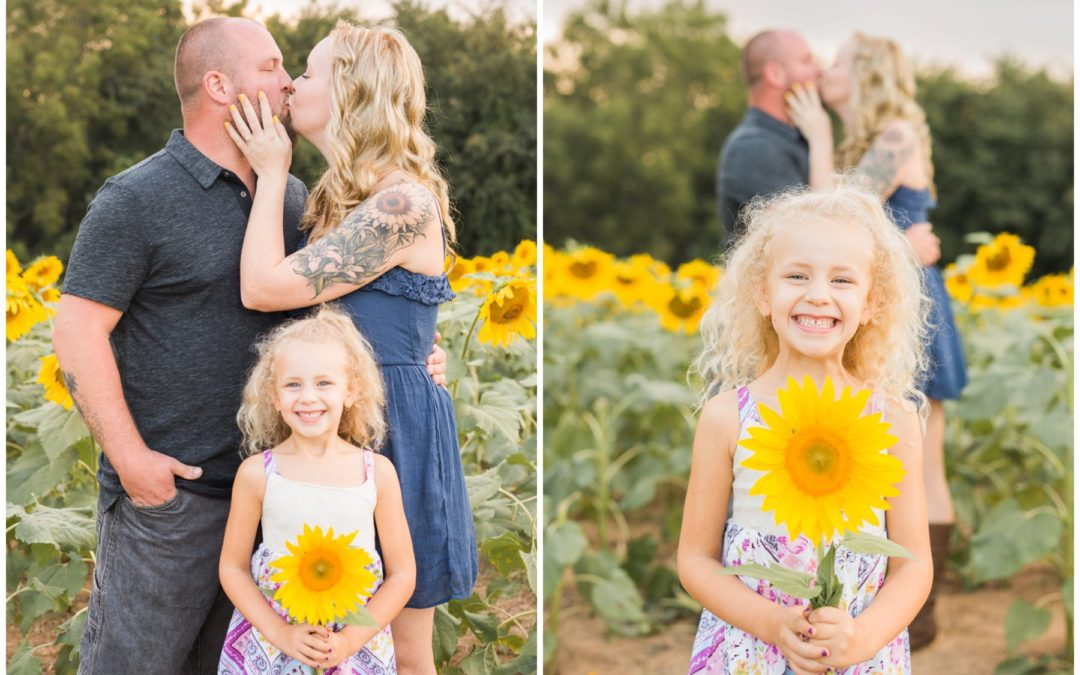 Kristen & Gary | Sunflower Engagement Session