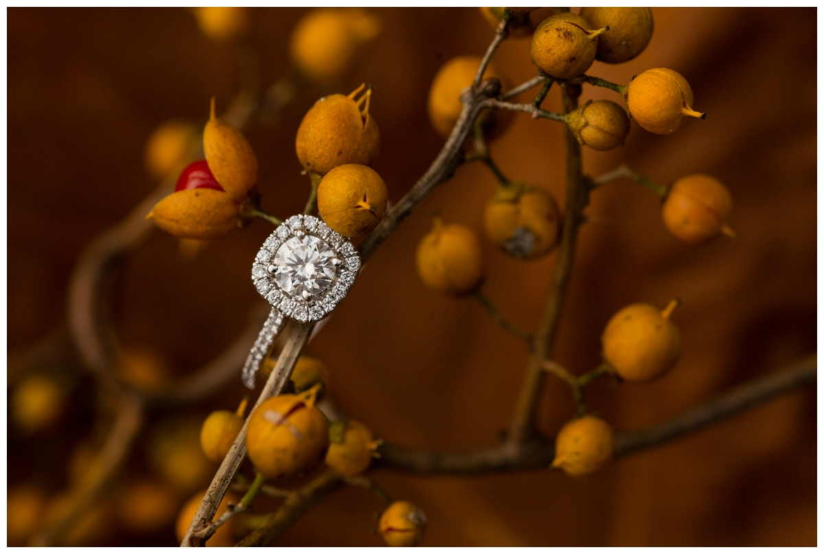 Fall Lake Hashawa engagement session. Engagement ring with leaves and berry