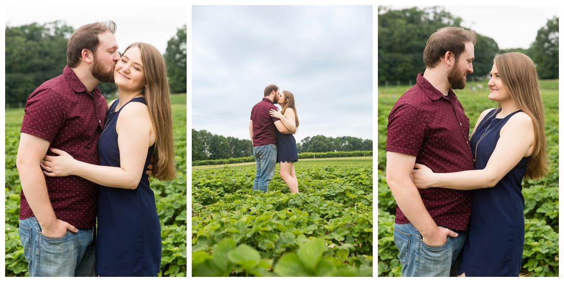 Woodbine Maryland Larriland Farm Engagement Photos. Baltimore Maryland Wedding photos. Strawberry field engagement photos. Engagement photos in a field.