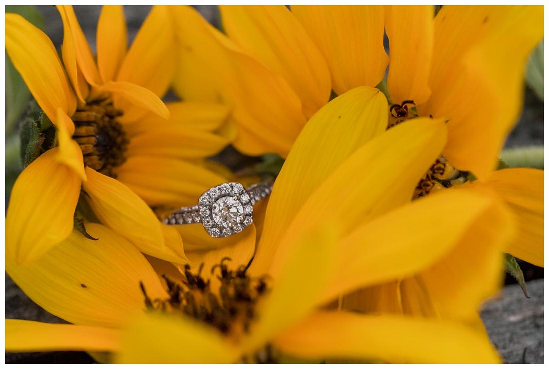 Maryland Wedding Photography Sunflower engagement photos. Maryland engagement. Bride and groom to be in flower fields. Flower fields maryland farm engagement photos. Engagement ring photos on Sunflowers.