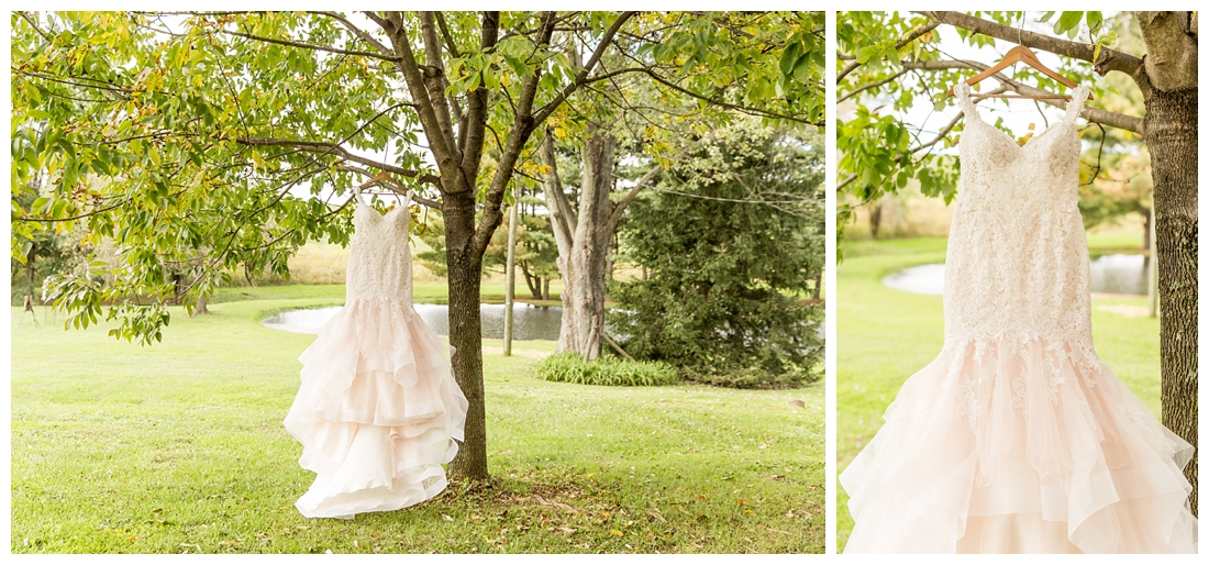 Fall wedding at The Royer House in Westminster Maryland. Cool fall day with dusty blue theme. Carroll County wedding. Cold Wedding day. Windy Wedding. Farm Wedding.  wedding gown. Brides gown hanging in trees.